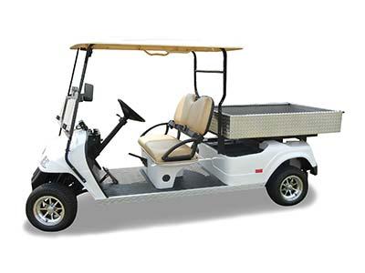 Star-EV Cart